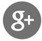 icona-google-plus-race-power